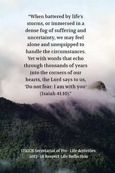 """""""When battered by life's storms, or immersed in a dense fog of suffering. Dense Fog, Respect Life, Do Not Fear, Feeling Alone, Storms, Self, Lord, Feelings, Sayings"""