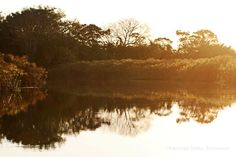 The Okavango Delta, Botswana - Moromaukuska.blogspot.fi