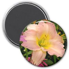 Pale Pink Lily Refrigerator Magnet #zazzle #lily #flower #magnet