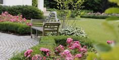 Outdoor Furniture Sets, Outdoor Decor, Plants, Home Decor, Flora, Interior Design, Home Interior Design, Plant, Home Decoration