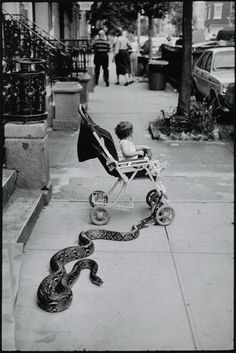 Photo: Leonard Freed. Greenwich Village, 1985. S). This picture is truly interesting. . .what was going on? This would be a good time for the baby's parents to show up:)