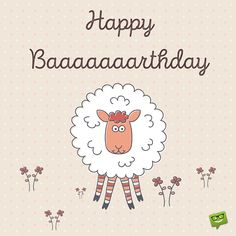 Happy Baaaaaaaaarthday!