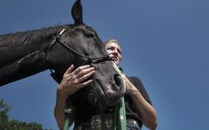 Two horses retired from Arlington National Cemetery get new homes