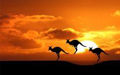 Australia Visitor visa subclass ( 600 )