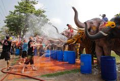 The Songkran Water Festival in Bangkok, Thailand Elephants spray tourists with water during the Songkran Water Festival on April 9.