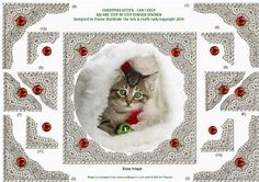 CHRISTMAS KITTEN CAN I HELP  on Craftsuprint - Add To Basket!