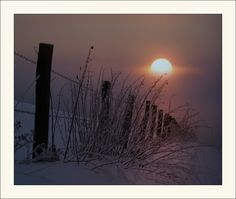Photo by Veronika Pinke