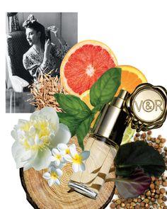 امگا یک ظرف میوه سرشار از طراوت و شادمانی است لطافتی که نوید بخش سلامتی مدرن به روایت ویکتور اند رولف است.