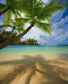 A collection of tropical beach pictures -Bavaro Beach Punta Cana! Love the shadow play of the palms on the beach sand! Bavaro Beach Punta Cana, Playa Beach, Ocean Beach, Ocean Waves, Places Around The World, The Places Youll Go, Places To Visit, Punta Cana Strand, Dream Vacations