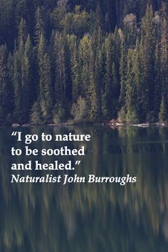 """I go to nature to be soothed and healed, and to have my senses put in order."" John Burroughs – On image of MOOSE LAKE in BRITISH COLUMBIA along Highway 24, nicknamed The Fishing Highway.  Explore meaningful quotes about life at http://www.examiner.com/article/travel-a-road-of-literate-quotes-about-the-journey"