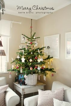 lovely white and red decorated christmas tree
