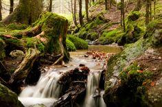 Photo Nature, Flowing water Waterfall, Photos, Photography, Outdoor, Outdoors, Photograph, Fotografie, Photo Shoot, Fotografia