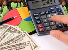 3 Fast Ways to Save Time and Money with Horse Business Bookkeeping. Read article in our free tip of the week http://www.equestrianprofessional.com/public/department97.cfm