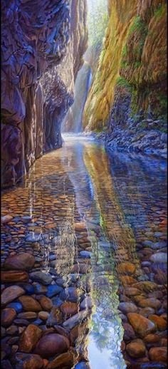 Oneonta Creek, Columbia River Gorge, OR.