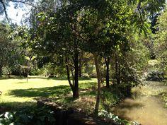 Le parc de l'Institut Pasteur de Madagascar