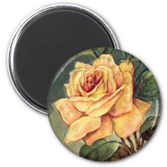 Vintage Yellow Roses Magnet via Zazzle