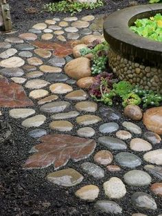 Garden path of rocks and stepping stones made from a leaf mold. Garden, ideas. pation, backyard, diy, vegetable, flower, herb, container, pallet, cottage, secret, outdoor, cool, for beginners, indoor, balcony, creative, country, countyard, veggie, cheap, design, lanscape, decking, home, decoration, beautifull, terrace, plants, house. #containergardenforbeginners #backyardideasonabudget #frontyard
