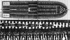 The slaves were brought into America on ships in horrific conditions. There was little space and many would die whilst on board.