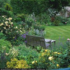 Bench in walled corner of cottage garden. Informal beds of roses, allium, hardy geranium, iris, peony, stachys, lavender, rosemary, philadelphus, catmint, alchemilla, delphinium - Manor House Summer
