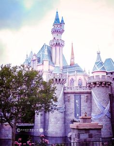 Disney-Sleeping Beauty's Castle Print 11x14 by HouseOfRouse