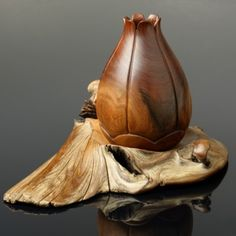 walnut-pod-on-driftwood  These gorgeous sculptures are made by Sterling Sanders who is a resident of  Bonner County, Sandpoint, Idaho.