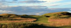 Murifield. Home of the 2013 Open Championsip. Travel to Scotland with Celtic Golf  http://www.celticgolf.com/2013-british-open-scotland-golf-and-spectator-vacation-packages