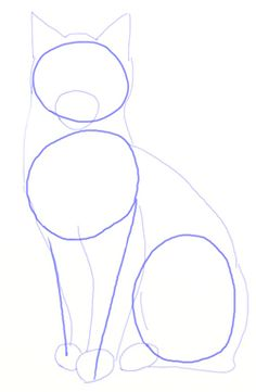 How to draw Realistic Cats, step 3