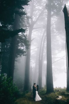 Lovers at the Forest