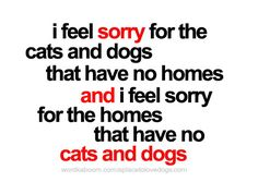 Just for the dogs.... I really don't like cats so..