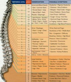 This explains so much i broke t5 t7 and l2 and I have rods through almost my whole thoracic and lumbar! Ugh