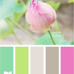 Lotus too