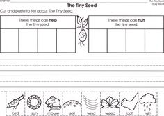 Ideas For Plants Kindergarten Crafts Eric Carle Kindergarten Units, Kindergarten Science, Teaching Science, Science Fun, Tiny Seed Activities, Literacy Activities, Seed Dispersal, Sequencing Worksheets, The Tiny Seed
