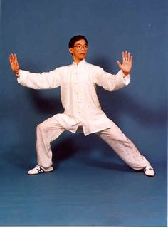 Dr Paul Lam, single whip Qigong, Tai Chi, Martial Arts, Meditation, Poses, Drawings, Pictures, Health, Style