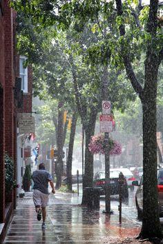 Rain in Frederick, MD