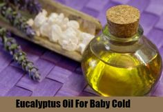 eucalyptus-oil for baby cold