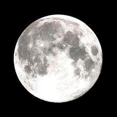 Moonglow Moonstone Bracelet - PL