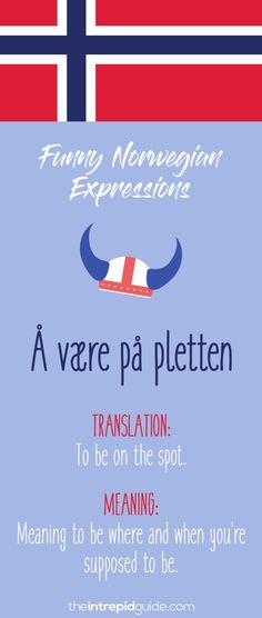49 Hilarious Norwegian Idioms and Sayings That Will Make You Giggle Norwegian Words, Norwegian House, Norway Food, Norway Language, Viking Runes, Learn A New Language, Learning Tools, Idioms, Family Quotes