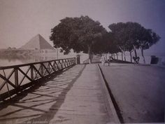 Vintage pictures of Cairo, Egypt.  This one is the avenue of the Pyramids during the flooding of the Nile.