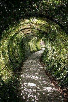 Garden tunnel, Alnwick Castle, Northumberland, England