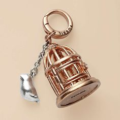 FOSSIL Jewelry Charms :Womens Rose Bird Cage Charm from Fossil. Saved to Accessories: Jewels. Pandora Bracelet Charms, Pandora Jewelry, Charm Jewelry, Jewlery, Charm Bracelets, Jewelry Box, Juicy Couture Charms, Fossil Jewelry, New Charmed