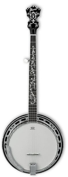 Ibanez B300 5-String Acoustic Banjo I think I need one of these.
