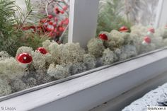 ikkuna,talvi,mökki,joulu,joulusisustus