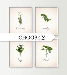 Kitchen Wall Decor - Choose 2 Herbs Kitchen Art Prints - Dining Room Decor - Culinary - Food Art - Cooking - Basil Sage Rosemary Parsley