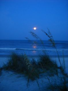 "Full moon at Pawleys Island, SC.  Believe it or not, this picture is not ""photoshoped.""  Just another beautiful night at my favorite beach.    (Photo by Soozi Allder)"