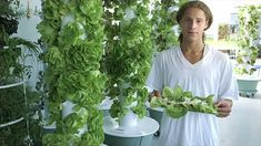 Tower Gardens® at The Green Bronx Machine, make sure you order at Anquidawithgreen.juiceplus.com
