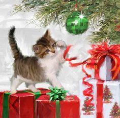 Kitten And Present