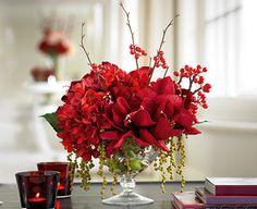 ruby amaryllis arrangement