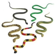This hand painted toy snake is great for any snake enthusiast. This toy animal figure will make any themed party come alive. Animal figures are fun for any goody bag or as prizes for a school or church carnival. Carnival Supplies, Carnival Prizes, Party Supplies, Snake Party, Animal Action, Wild Kratts, Party Supply Store, Dangerous Animals, Novelty Toys