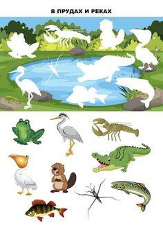 Preschool Scavenger Hunt, School Posters, Kindergarten Activities, Habitats, Rooster, Crafts For Kids, Occupational Therapy, Fictional Characters, Collages