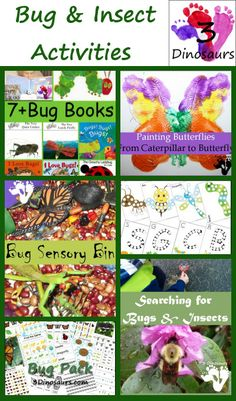 Bug & Insect Activities from 3 Dinosaurs